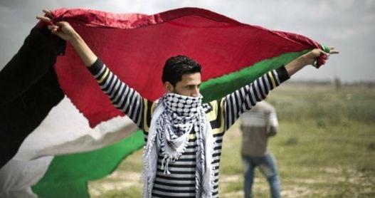 meer-dan-12-miljoen-palestijnen