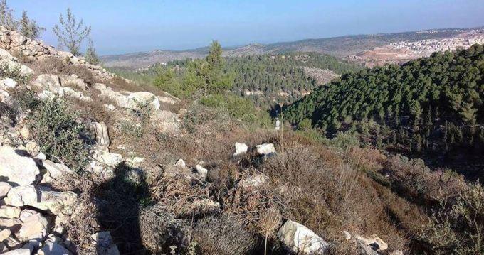 al-Sawiya