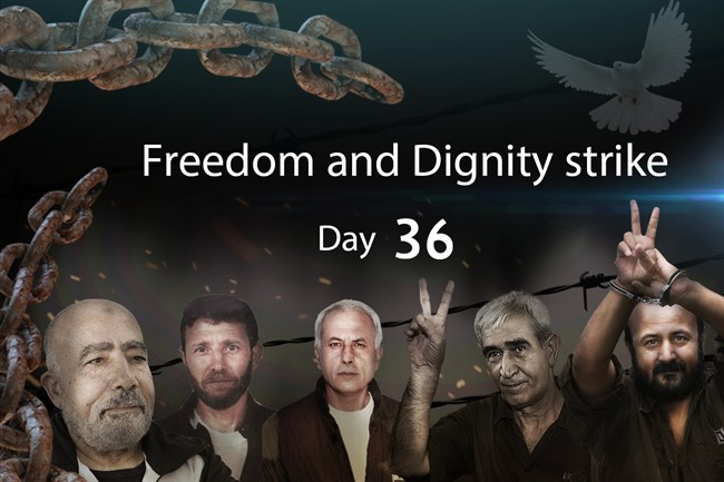 36th day of hungerstrike