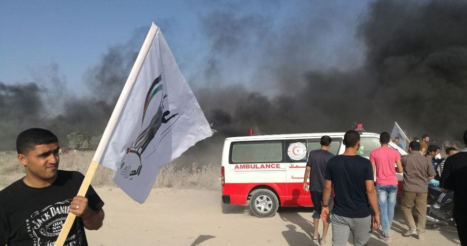 22 Palestinians injured