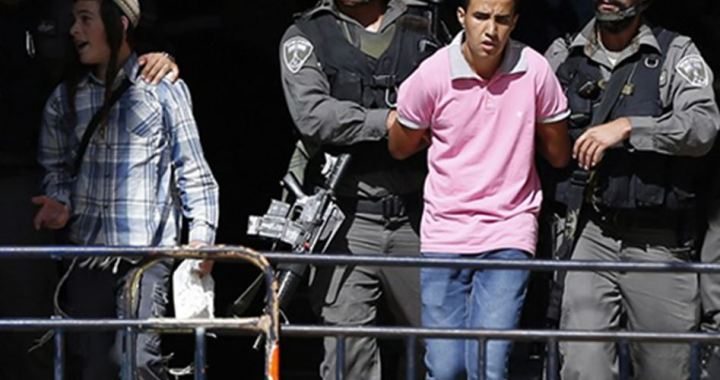 350 Palestinians detained
