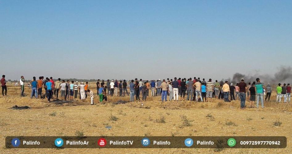 Gaza demo's