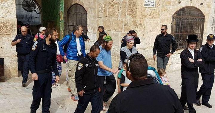 Settlers stormed plazas of al-Aqsa