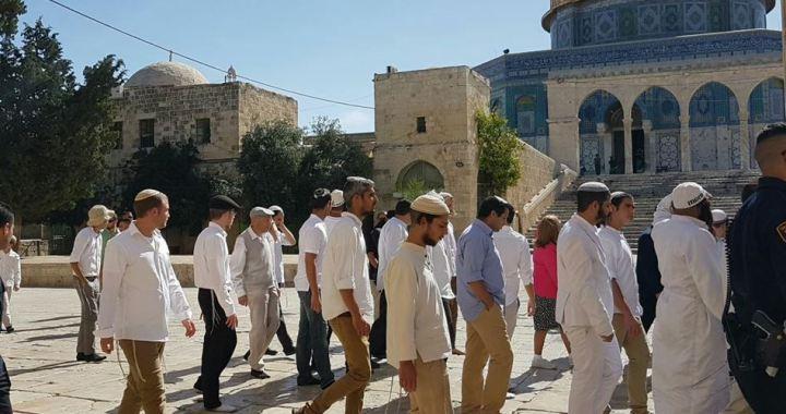 1391 settlers stormed al-Aqsa June