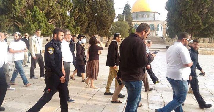 53 zio's at al-Aqsa