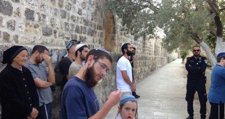 80 settlers in Al-Aqsa