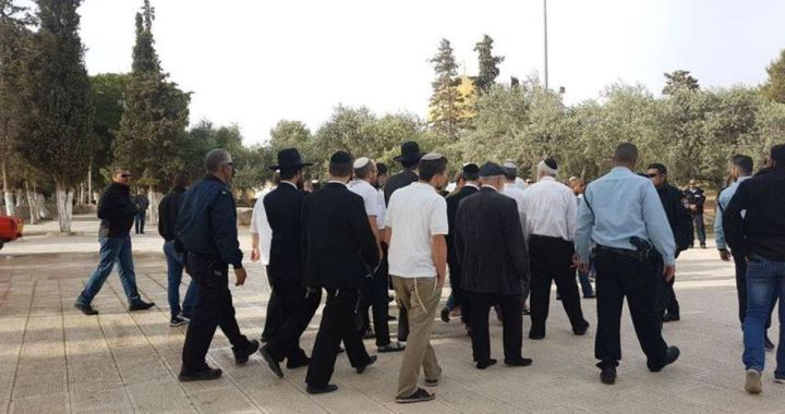 Settlers get in al-Aqsa