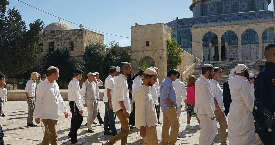 102 settlers break in Al Aqsa