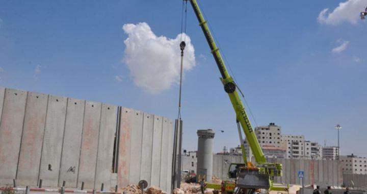 Lieberman and wall