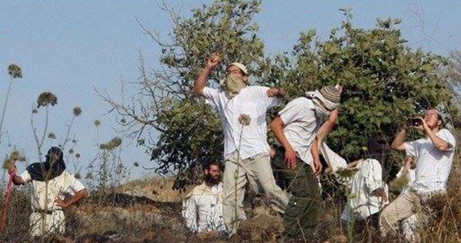 Umm al-Khair attackted