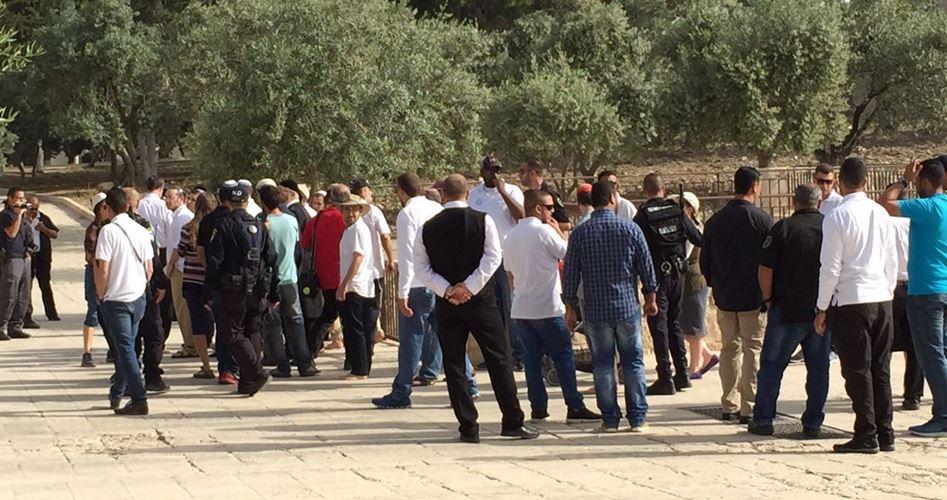 86 settlers Al-Aqsa