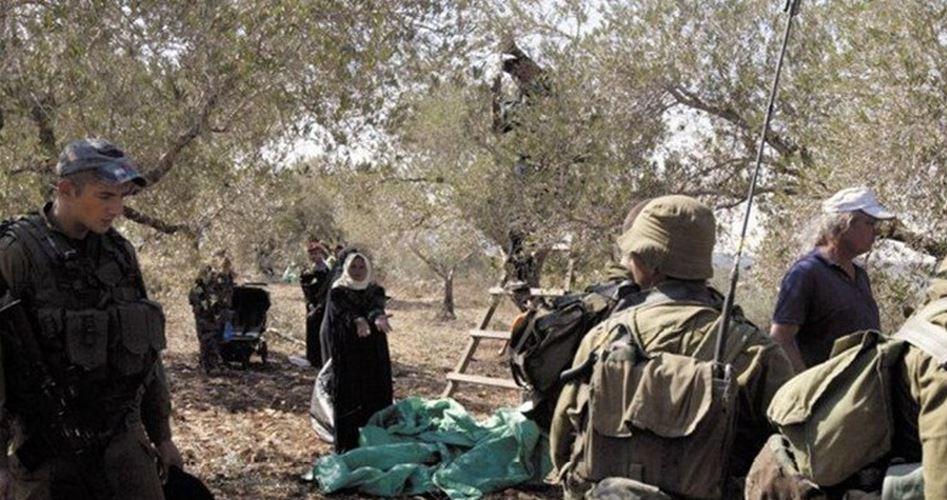 Assault activists as-Sawiya