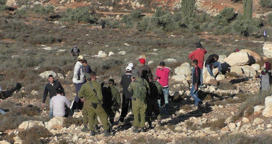 Attack by settlers Kirbet Yanoun