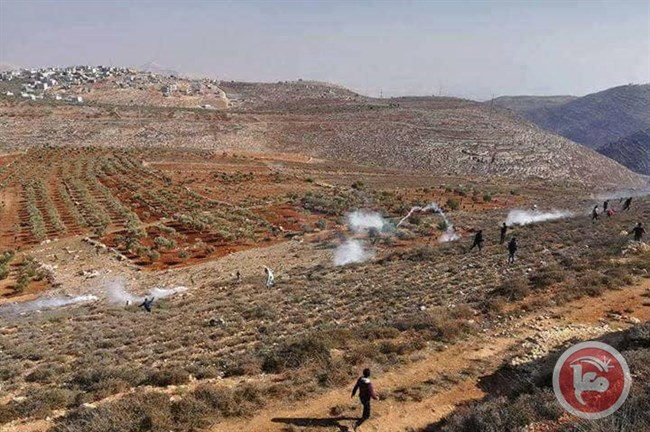 Live fire Qusra