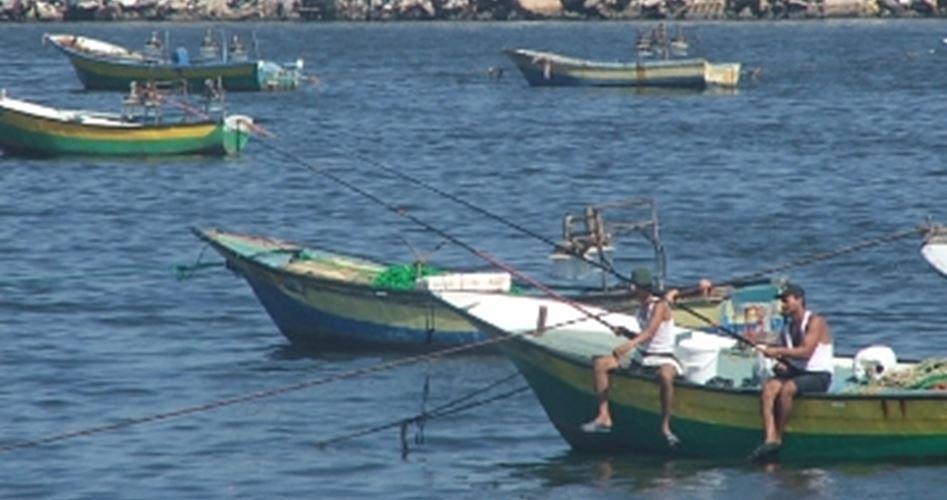 Reducing Gaza fishing area