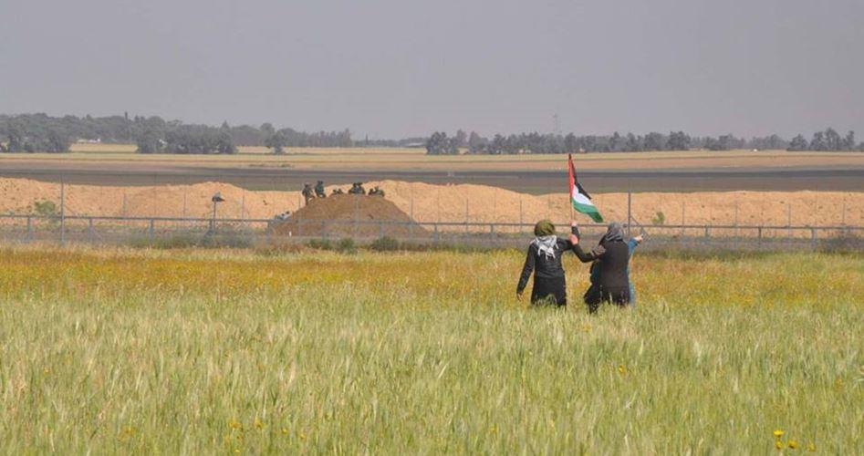 PCHR Gaza