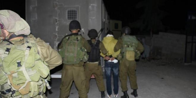 12 Pal's arrested
