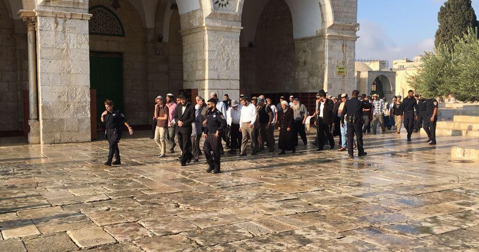 Terrorism at Al Aqsa