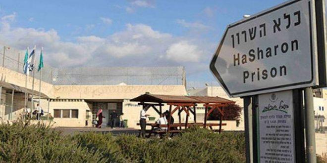 Hasharon prison